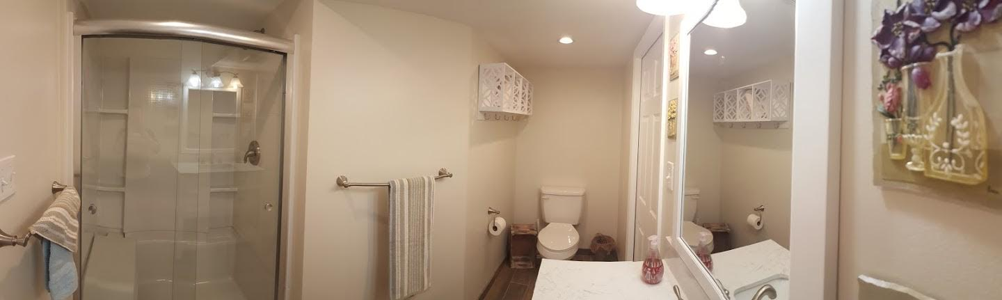 basement bathroom in Delaware 3