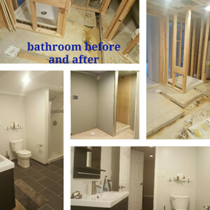 Basement Remodeling in Delaware bathroom